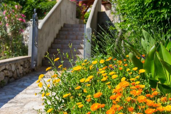 apartments-meri-miholascica3012A90F73-3DA6-4EC5-963D-24453334EF95.jpg