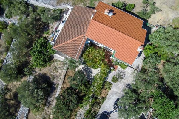 apartments-wilma1236C914AF2-80A6-4CE2-8A4D-4C0E43CA06E4.jpg